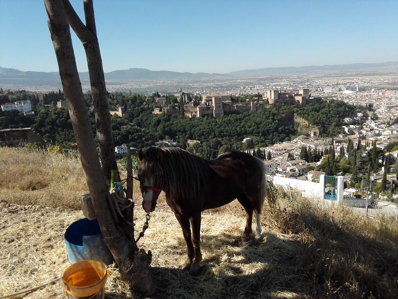 Bei Granada