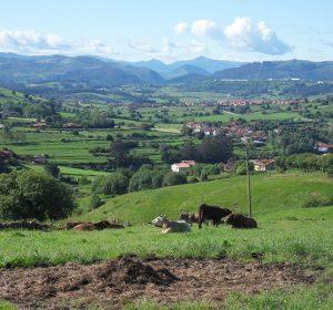 Landschaft in Nordspanien