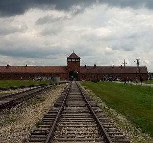 Das Tor nach Auschwitz Birkenau