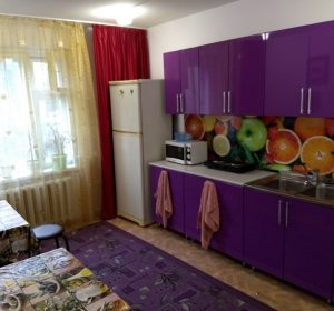 Gemeinschaftsküche des Hostels Uyt in Kursk