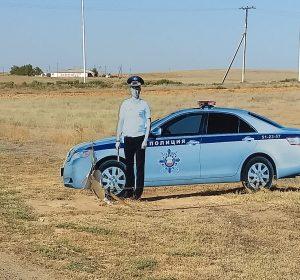 Hat überall ein wachsames Auge: die russische Polizei