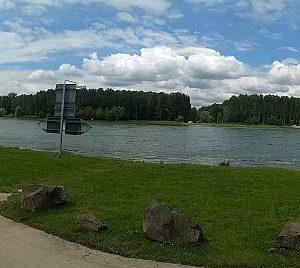 Der Rhein bei Rheinstetten